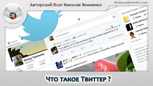 твиттер, микроблог, twitter, что такое твиттер