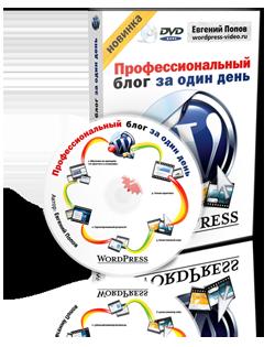 Wordpress – профессиональный блог за один день