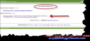 Блог в каталоге DMOZ