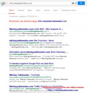 google-search11