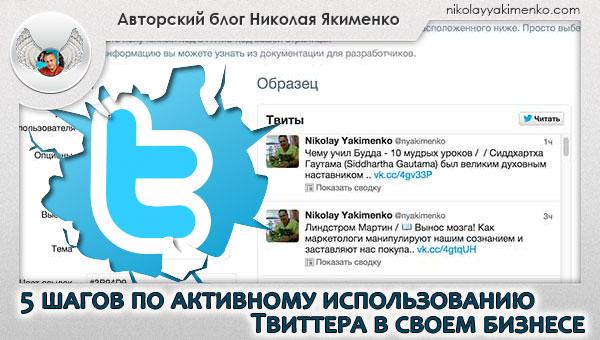 бизнес и твиттер, твиттер для бизнеса, твиттер, виджет твиттера