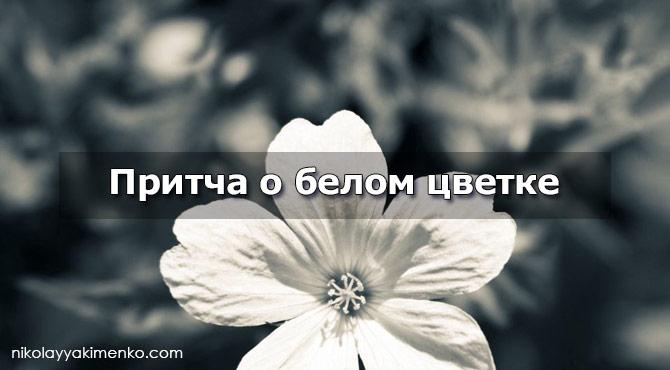 притча о белом цветке